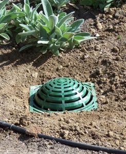 Drainage Contractors - French Drain Company Near Me
