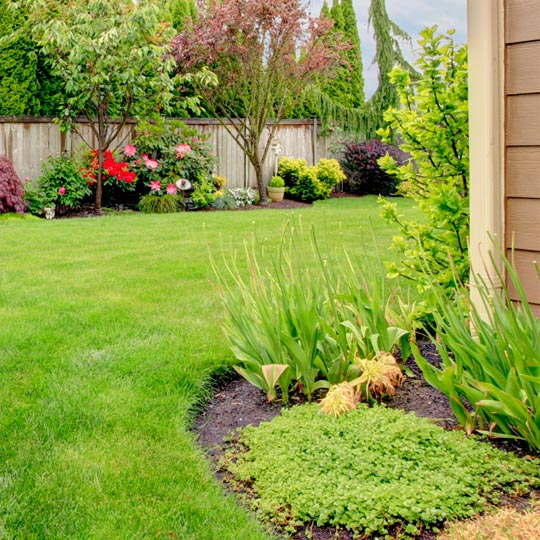 Earth Ideas Landscaping