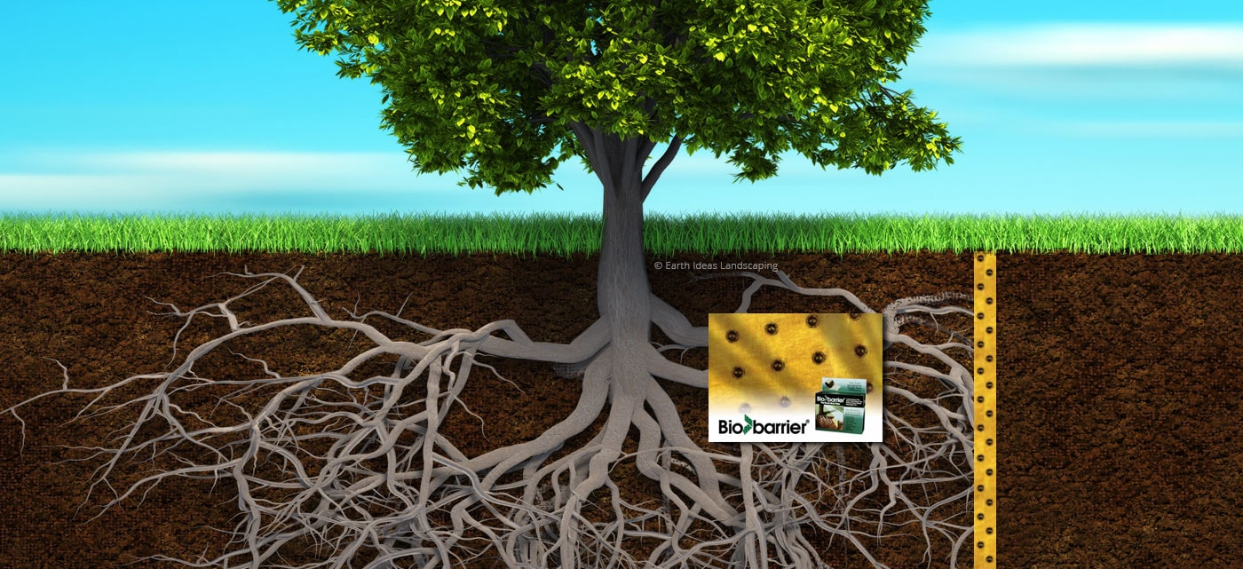 Tree Root Barriers Earth Ideas Landscaping
